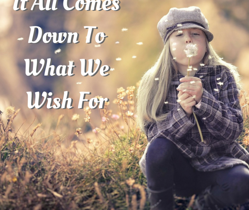 Don't Squander Your Wishes